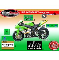 Adesivi Stickers Pegatinas ZX6R ZX10R MOTO GP SBK TEAM GREEN ! TOP QUALITY !